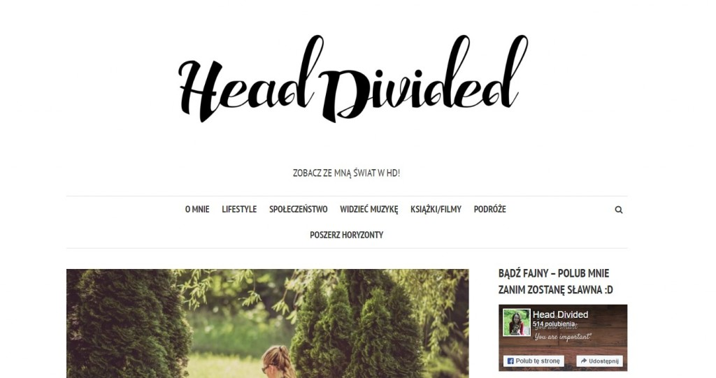 head-divided-1